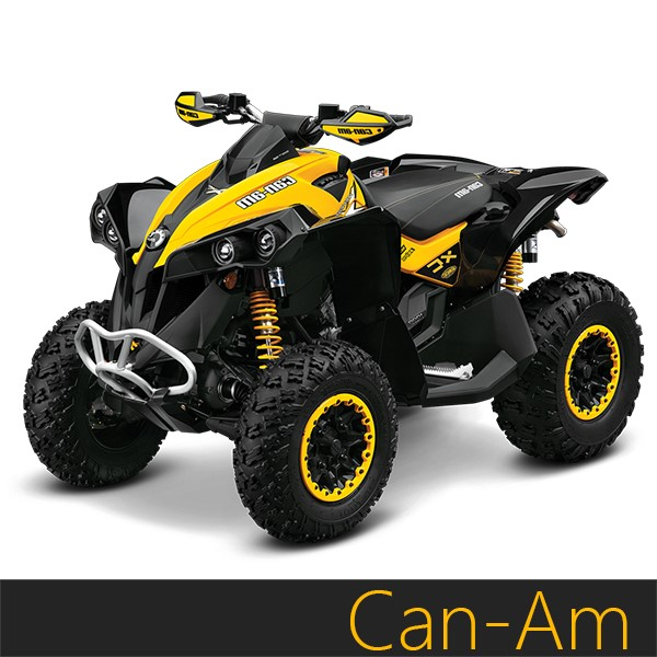 Je Pistons can-am renegade / outlander 400